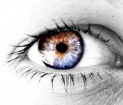 fierce-eye-watching-1