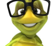 stock-photo-10119476-turtle-with-glasses