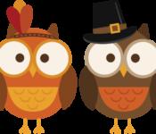 large_thanksgiving-owls